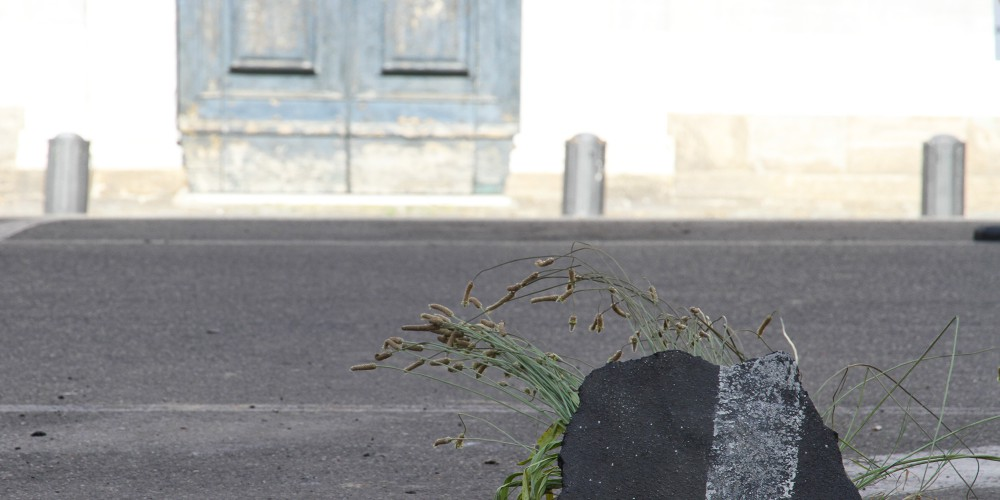 04-gianni-lucchesi-natura-li-piazza-san-paolo-pisa