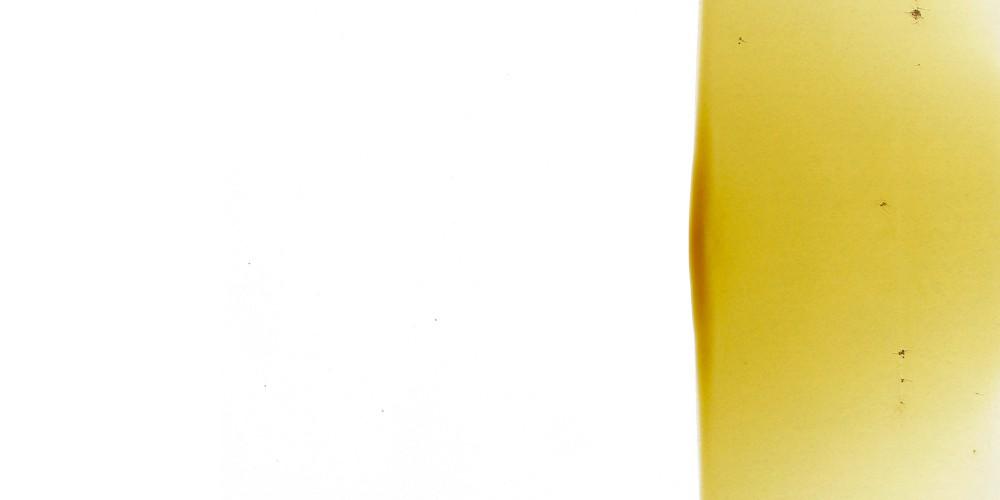 gianni lucchesi 2007 - 2009 06