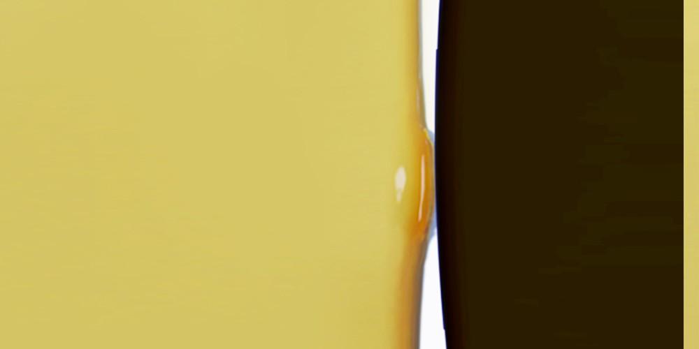 gianni lucchesi 2007 - 2009 14