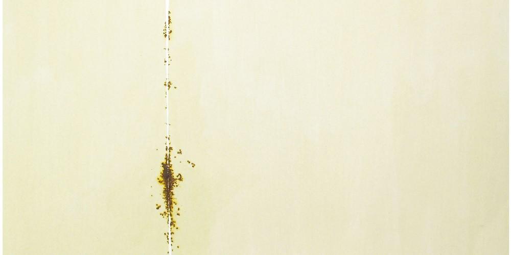 gianni lucchesi gradienti 06