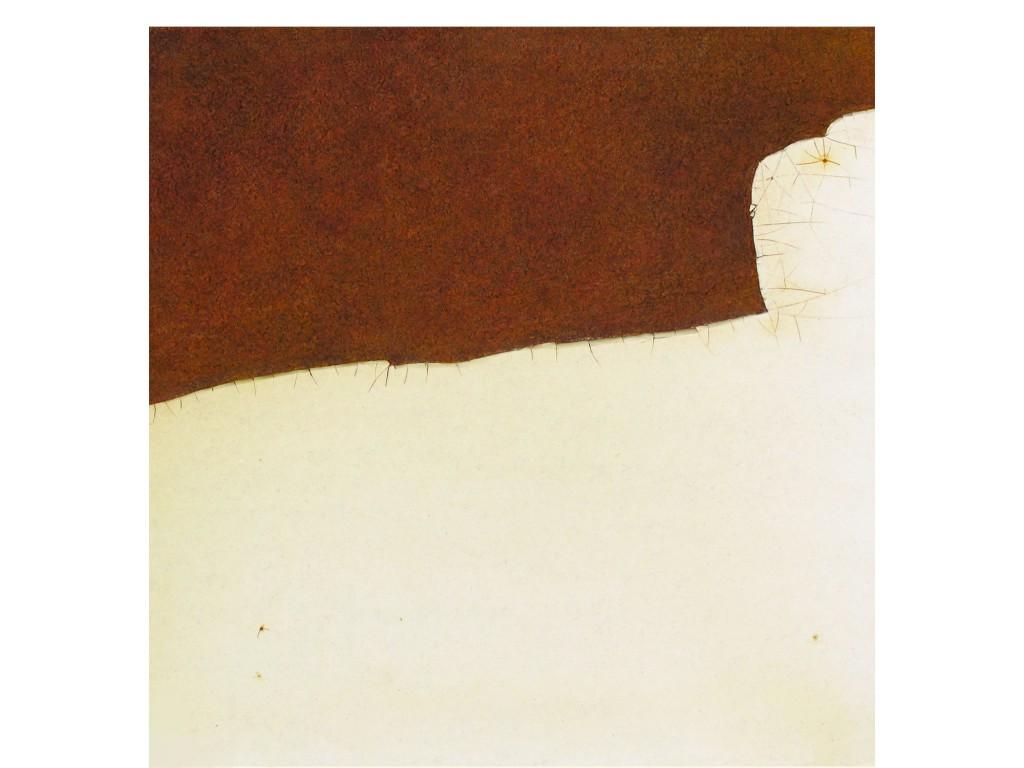 gianni lucchesi pitture 06