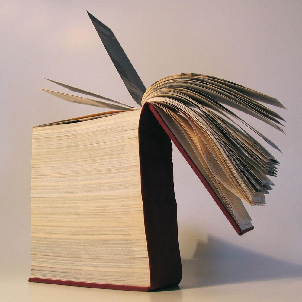 """2011 Libro d'autore – """"Dentro l'arte in copertina"""""""
